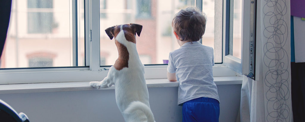 A dog and a boy looking outside the window - social isolation and the effects of Corona on hearing